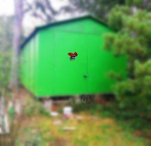 Maluji i na garáže, venkovní prostory a stěny pokojíků :).